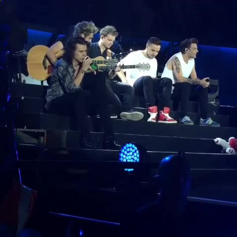 Vine by one direction videos™ - LIAM WAS SINGING TO A BUG