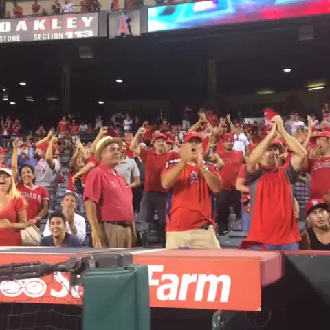 Anticipation and excitement is building here #AtTheBigA! TEX-1, OAK-1 - Los Angeles Angelss post on Vine