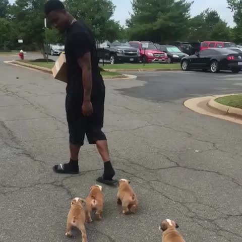 Vine by Redskins - .@salute_me17 bringing just the essentials to #SkinsCamp.