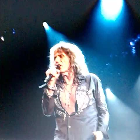 """Watch Jéssica Gamarra's Vine """"#StillOfTheNight #Whitesnake"""
