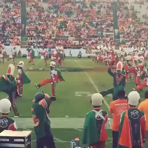 @_Mxbbs post on Vine - #FAMU #Marching100 Killing both of my Dances #NaeNae and #WhipDance by me and the bro TheRealHasani #WhipTakeover 🚗💨💨 #FamousToMost - @_Mxbbs post on Vine