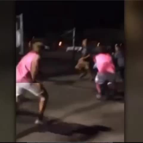 A brutal attack at a local school. Now the beatdown backlash sweeping social media. At 11p @ABC7 - ABC7s post on Vine