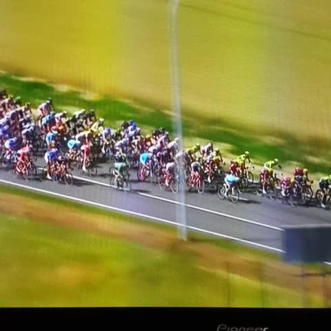 Vine by Keith - Tour de France crash #tdf #tourdefrance2015 #latour2015