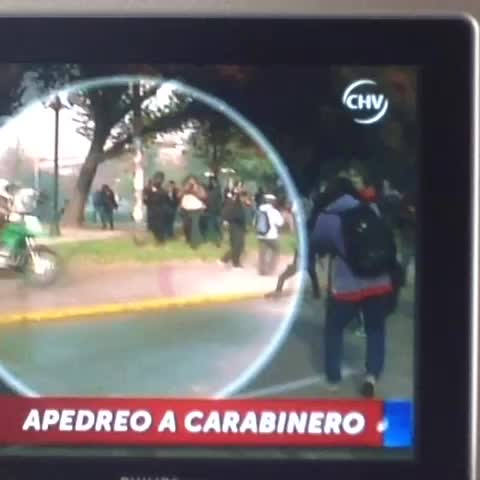 Vine by Pamela Juanita Cordero - Esto es criminal. Se pasó.