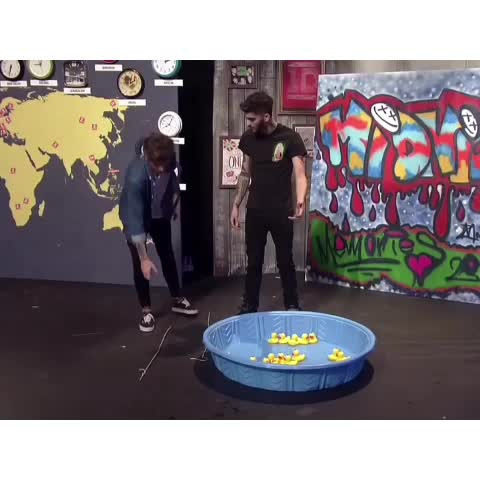 """Vine by Niall Girls - """"I love ducks!"""" """"Tch. Thank you, Niall."""" 😂😂😂 always gonna be  one of my fave  nouis moments - Shay (YT stag)"""