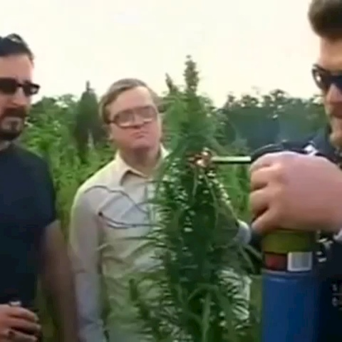 Ricky tests his new crop! #rickyisms #tpb #trailerparkboys #funny #comedy - Best Of Trailer Park Boyss post on Vine