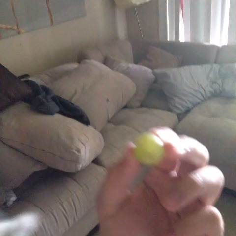 King Triskas post on Vine - #ABOO loves dem grapes boy! - King Triskas post on Vine