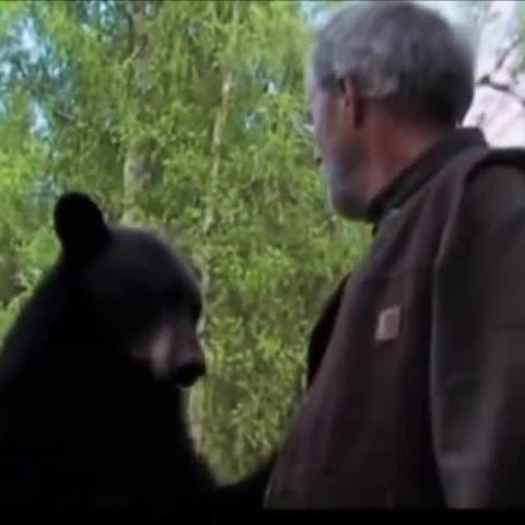 Alaskan Thug Life #BearSlap - Vine by Unexpected Thug Life - Alaskan Thug Life #BearSlap
