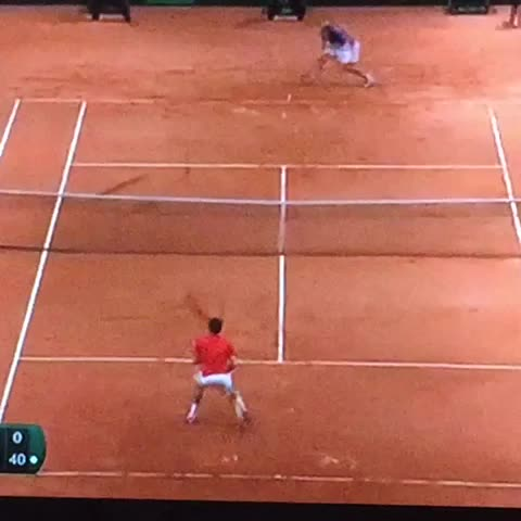 Scarlett Lis post on Vine - The very moment Roger won the match and the Davis Cup! I cried as he fell and cried...! #DavisCupFinal #Federer #rogerFederer - Scarlett Lis post on Vine