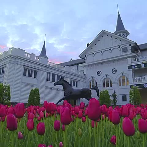 Vine by Kentucky Derby - Spring has Sprung! Bring on the #KyDerby.