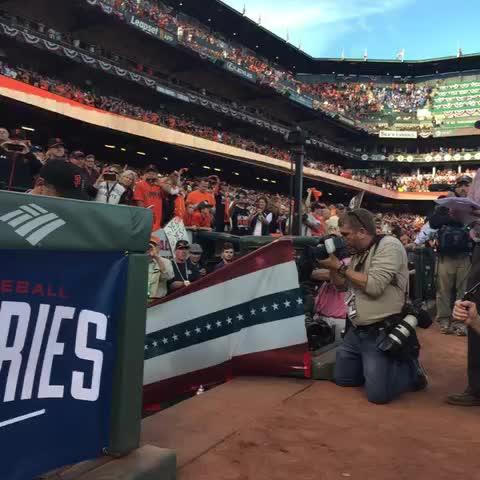 San Francisco Giantss post on Vine - Your #WorldSeries #sfgiants starting #VineUp - San Francisco Giantss post on Vine