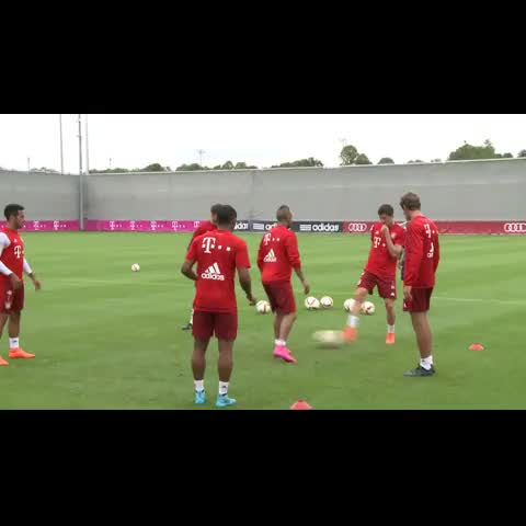 Vine by Live Goals - Nutmeg