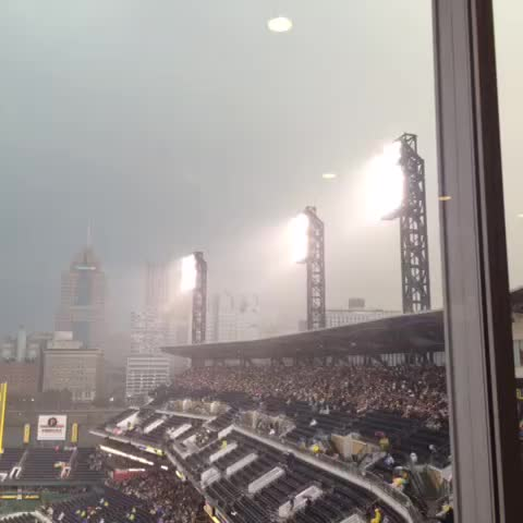 Vine by Jesse Rogers - Obligatory rain vine from Pittsburgh