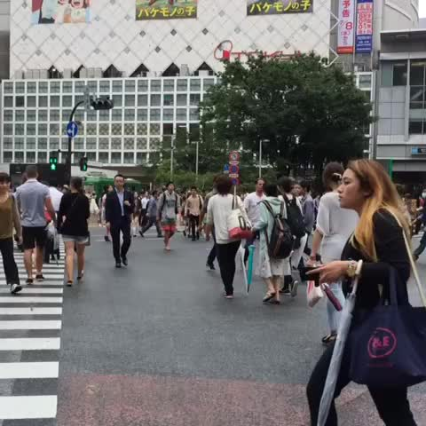 Vine by Borussia Dortmund - Why did Karl-Heinz Riedle and Lars Ricken cross the road? 🇯🇵😉 #asiatour