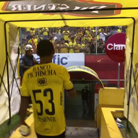 Lino el último en ingresar con los aplausos de la hinchada en tribuna #vamosidolo - Vine by BarcelonaSC - Lino el último en ingresar con los aplausos de la hinchada en tribuna #vamosidolo