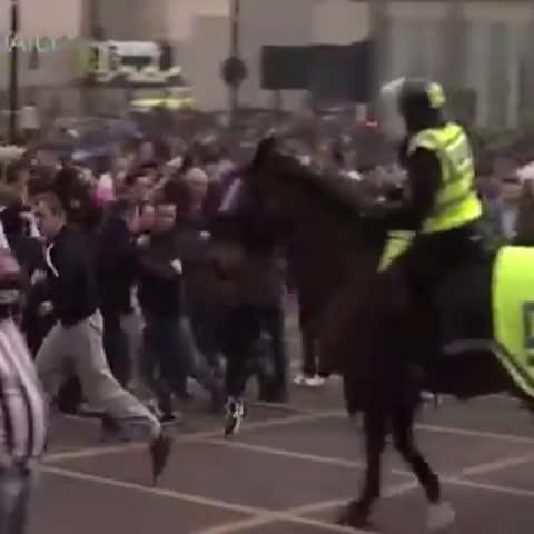 Vine by abeeleyb - Newcastle fan fighting a horse 😂