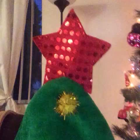 Where r u Christmas? repost if u can find it. - Vine by Miranda Sings - Where r u Christmas? repost if u can find it.