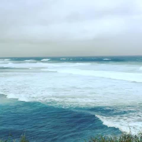 watch cruisetiki s vine maui waves hawaii cruise