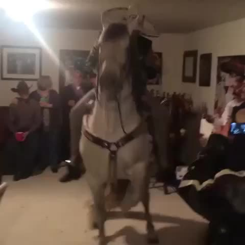 Cesar Martinezs post on Vine - Vine by Cesar Martinez - Puro Pinche Pari #mexican #turnup #party