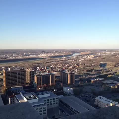 Vine by Adrianne Russell - City Hall Observation Deck. #KCMO