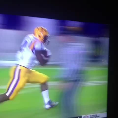 Leonard Fournette TD run. - Barrett Sallees post on Vine