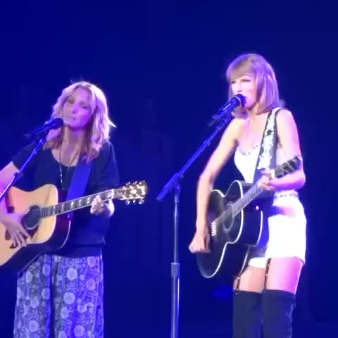 Vine by StarlightTSwift - Smelly cat, smelly cat, its not your fault!