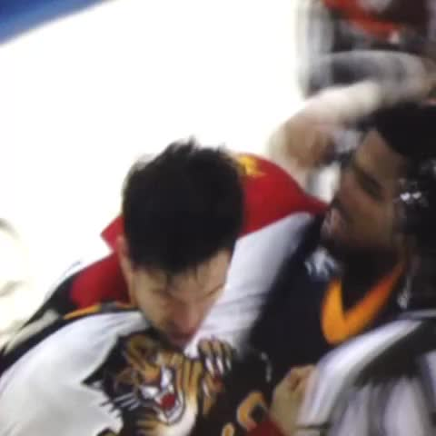 Vine by John Buccigross - Pretrovic and Kane fought 3 times tonight #👊🏻