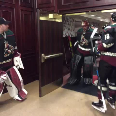 Vine by Arizona Coyotes - #ThrowbackInBlack