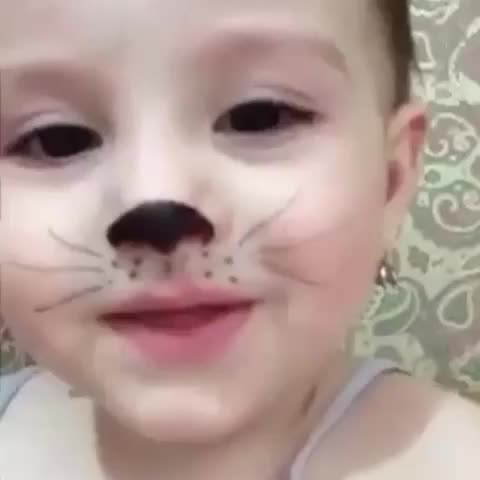 ???????? - Vine by Oğulcan Orhanoğlu - 🐱🐱