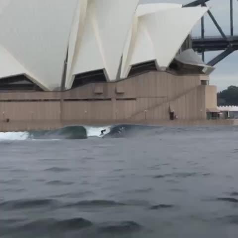 Vine by fitzyandwippa - Surfs up bro. #SydneyWeather