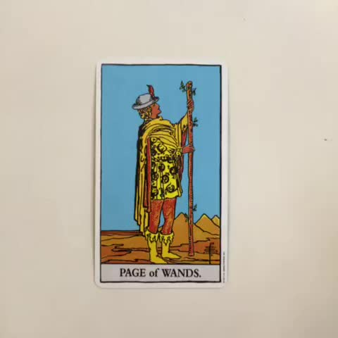 the page of wands reversed