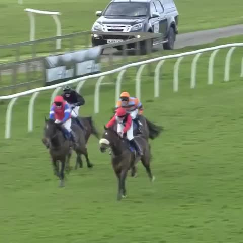 Vine by Jay - Shocking fall at Wincanton today