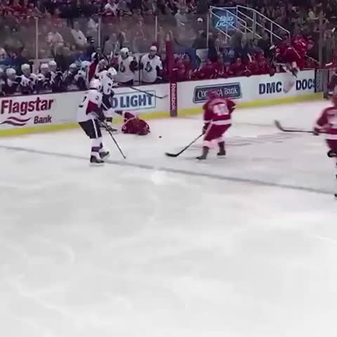 Vine by Detroit Red Wings - Go on with your bad selves, Pav & Z. #LGRW