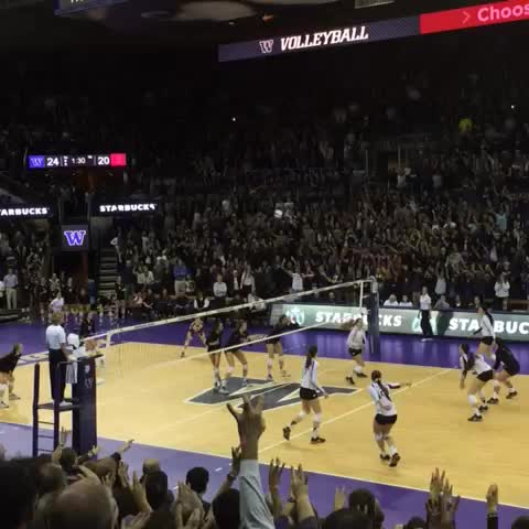 Washington Huskiess post on Vine - Dubs up! No. 5 @UWVolleyball protects home court on Senior Night & deals No. 1 Stanford its first loss of the season. #UWHuskies - Washington Huskiess post on Vine