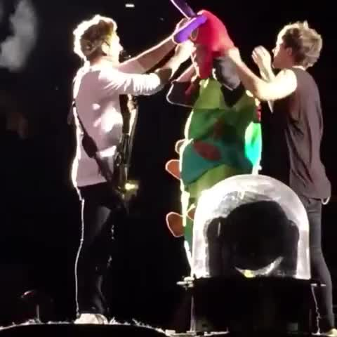 Vine by nicole✌️ - LOUIS GETS NIALL TO COME CLOSER JUST SO HE CAN HIT HIM ON THE HEAD WITH THE ANTLERS.😂#otrapittsburgh #OTRATour