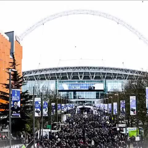Vine by Chelsea FC - #Chelsea fans show their support ahead of the 2015 Capital One Cup final… #CFC #ChelseaFC