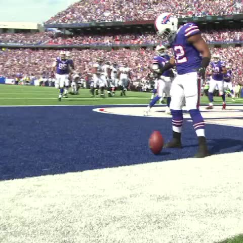 Vine by Jonah Javad - Hands down, best #Bills TD celebration of 2013. SO MUCH GOING ON IN IT.
