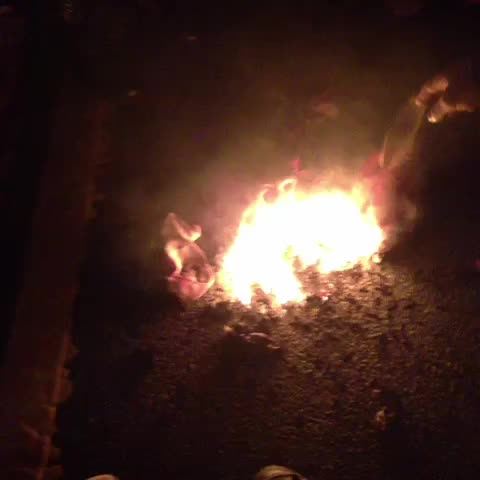Burning the US flag at #dcferguson - Rania Khaleks post on Vine