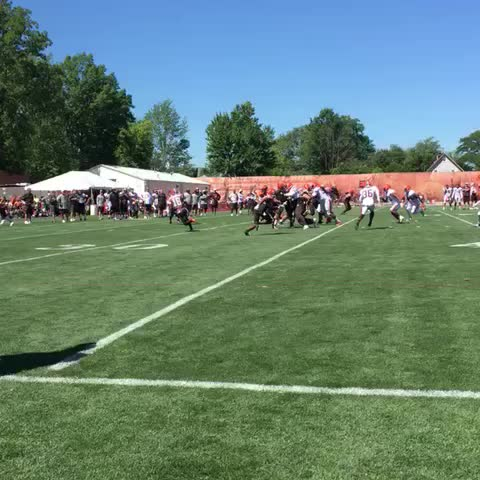 Vine by Cleveland Browns - FEED. THE. CROW.
