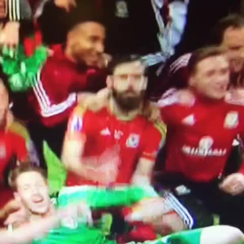 Vine by Rachel May - Ledley cutting shapes as Wales qualify for Euro2016