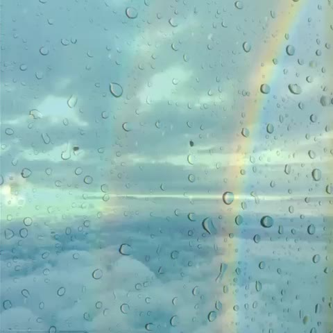 Vine by Hopegrown - #6secondsofcalm #hopegrown #doublerainbow #rain