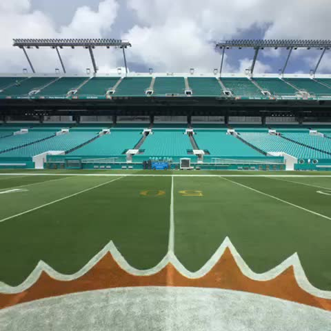 Vine by Miami Dolphins - #HomeSweetHome