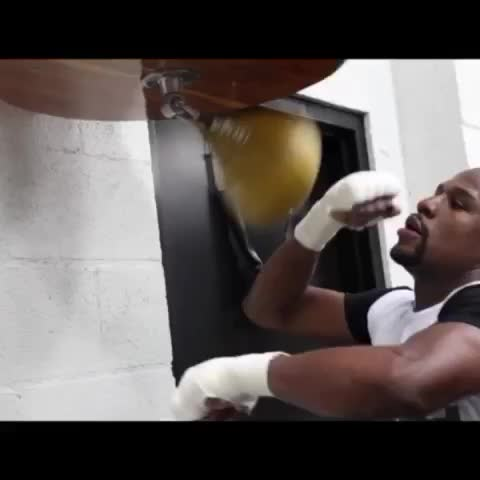 Vine by Floyd Mayweather - www.themoneyteam.com