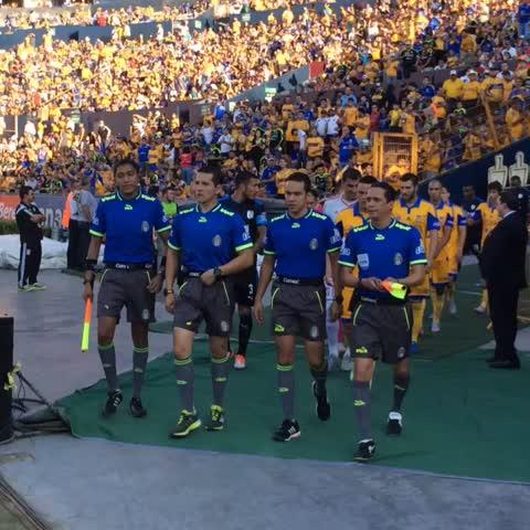 Saltan los 2 equipos a la cancha #VamosTigres - Vine by Club Tigres Oficial - Saltan los 2 equipos a la cancha #VamosTigres