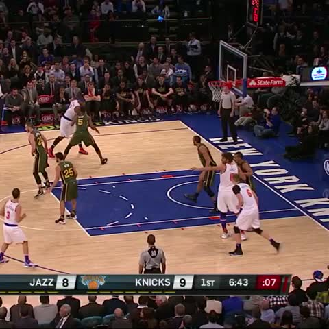Basketball block vine