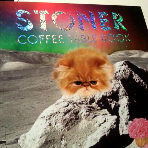 "watch luisuzcategui's vine, ""stoner coffee table book. #stonee"